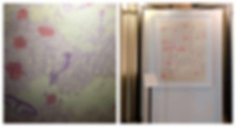 2018鄒駿昇老師的數位版畫,製作成抱枕,非常受歡迎。