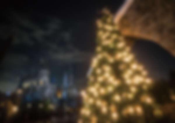 活米聖誕樹