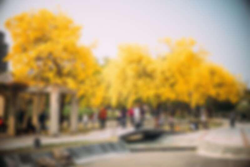 圖片來源:flickr|chia ying Yang