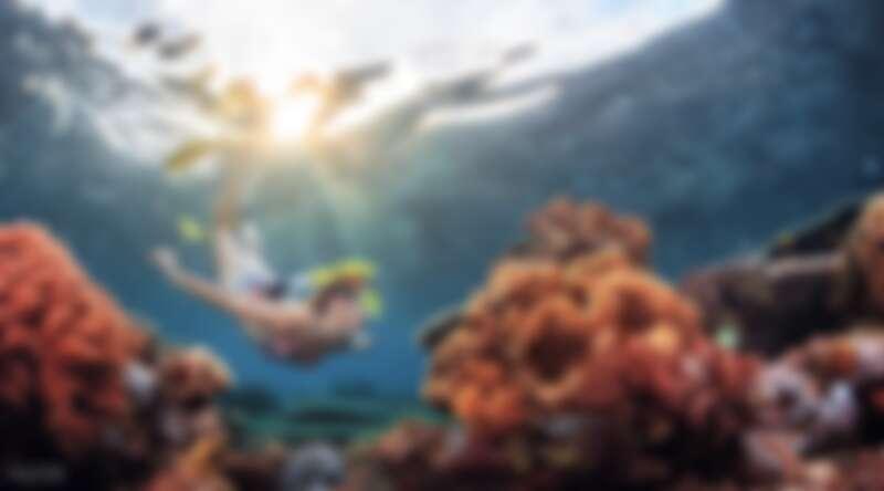 前往墾丁獨有平台式潛水,探索綺麗海底世界。Source: KLOOK
