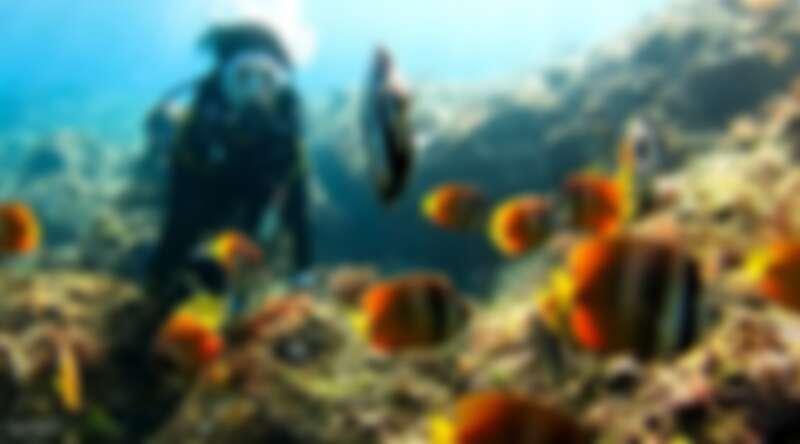 在小琉球體驗水中無重力的自由漂浮感,盡情欣賞豐富海洋生態。Source: KLOOK