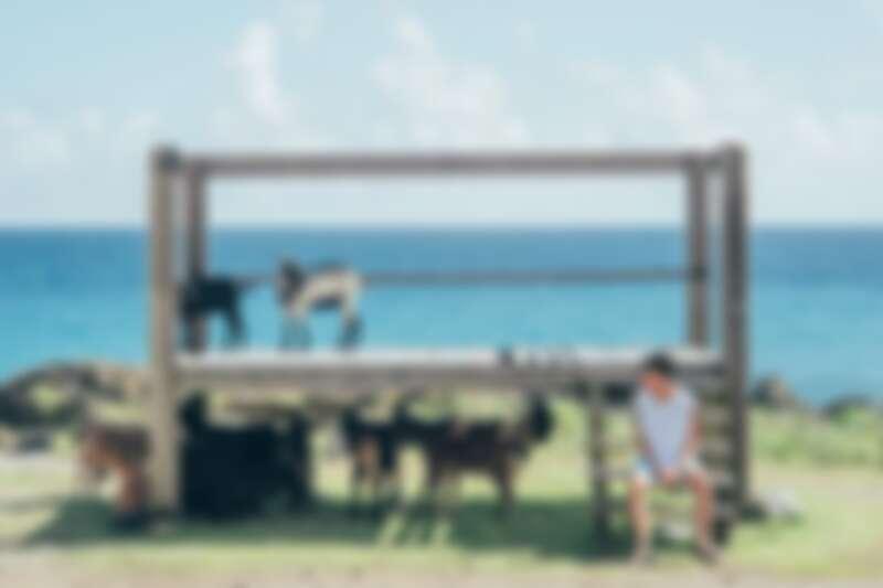 蘭嶼野銀部落。圖片來源:instagram @w__8.11