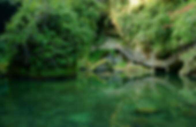 杉林溪忘憂森林一日遊-台灣少見的幽美之境。Source: KLOOK