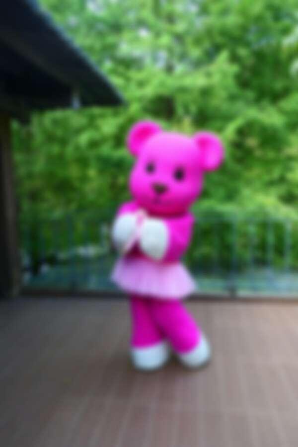 愛波大使MOMO熊