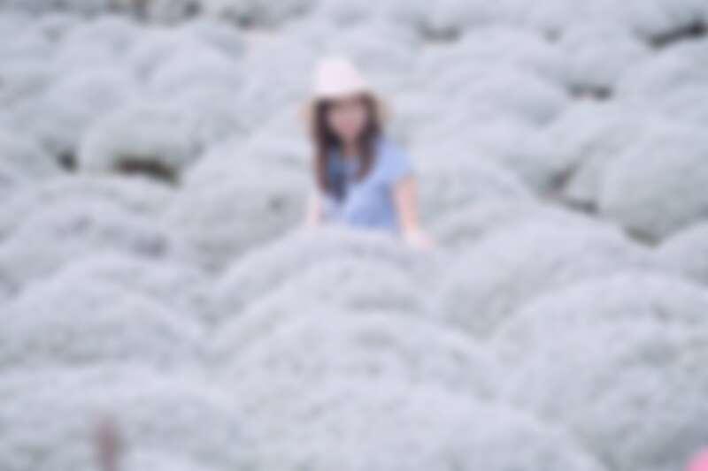 Photo/IG@shilinfan 授權提供
