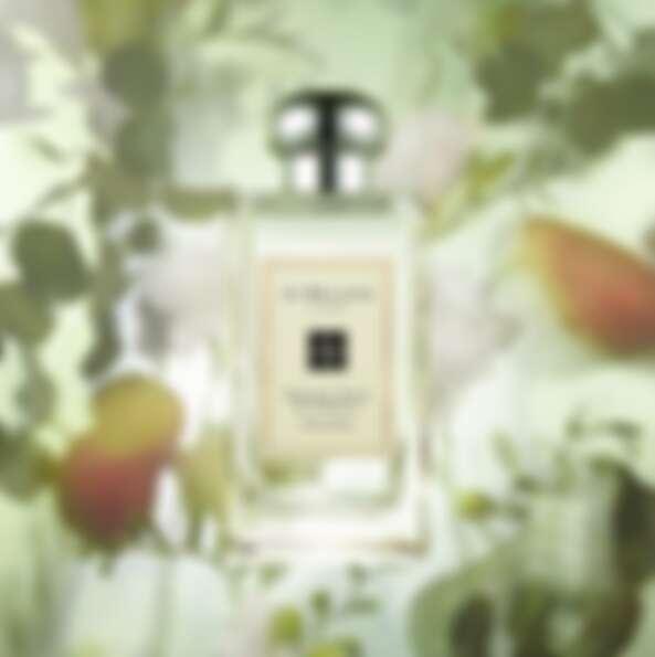 英國梨與小蒼蘭香水,100ml,NT4950。