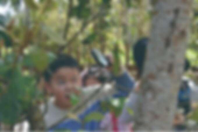 親子一同來訪體驗農村文化與生態旅遊的樂趣。Source: KLOOK