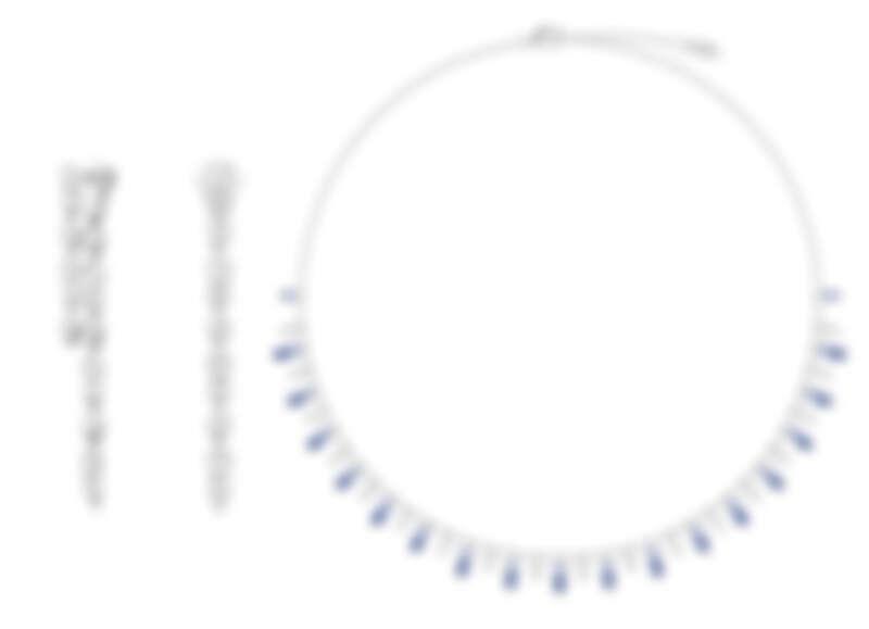 PIAGET Sunlight系列18K白金鑽石耳環、PIAGET Sunlight系列18K白金鑽石及藍寶石項鍊
