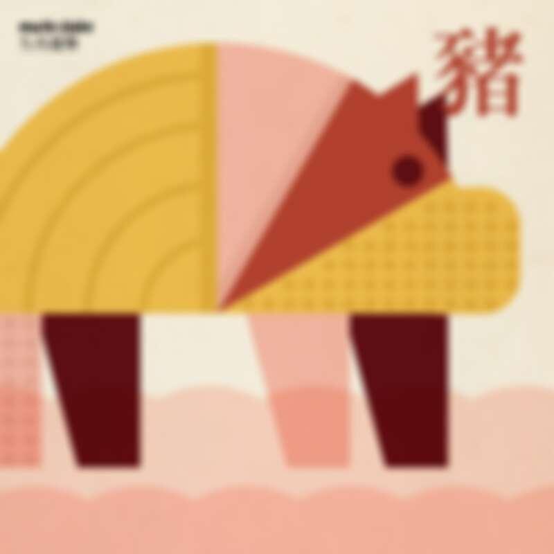 2021生肖-豬