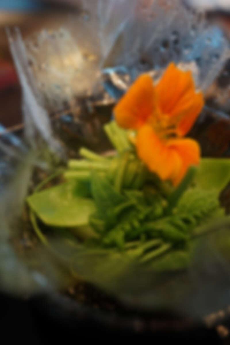 玻璃紙內加入金蓮花、龍鬚菜、山蘇、水蓮跟冬瓜塊。