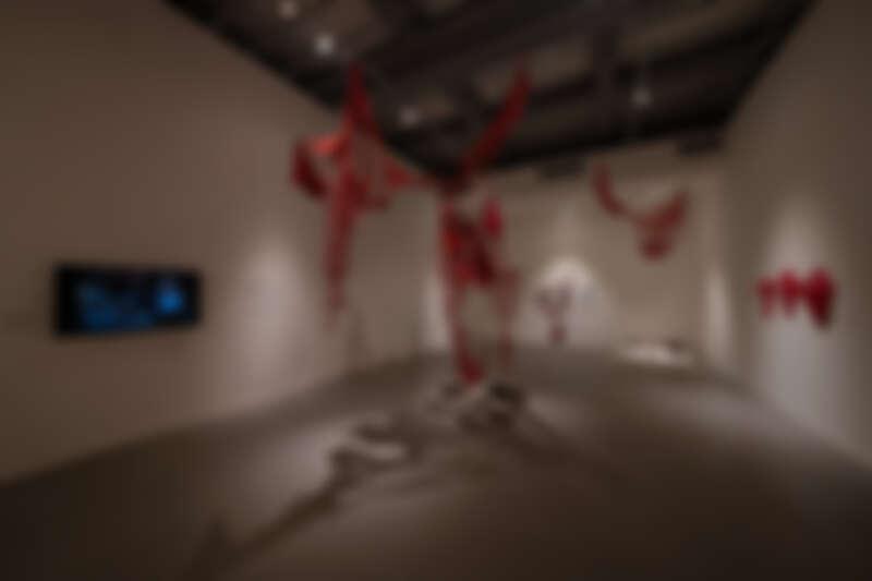 塩田千春,《外在化的身體》,2019/2021