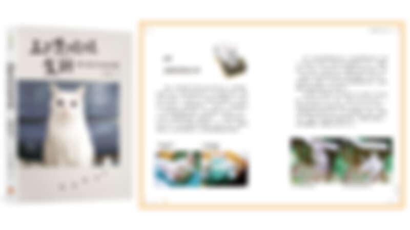 人氣YouTuber貓咪《豆漿娘娘駕到: 貓奴阿晧的跪安日常》連續6週蟬聯誠品書店暢銷榜
