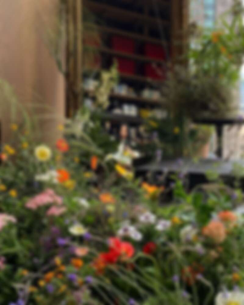想想的空間花藝設計作品同樣充滿生命力。