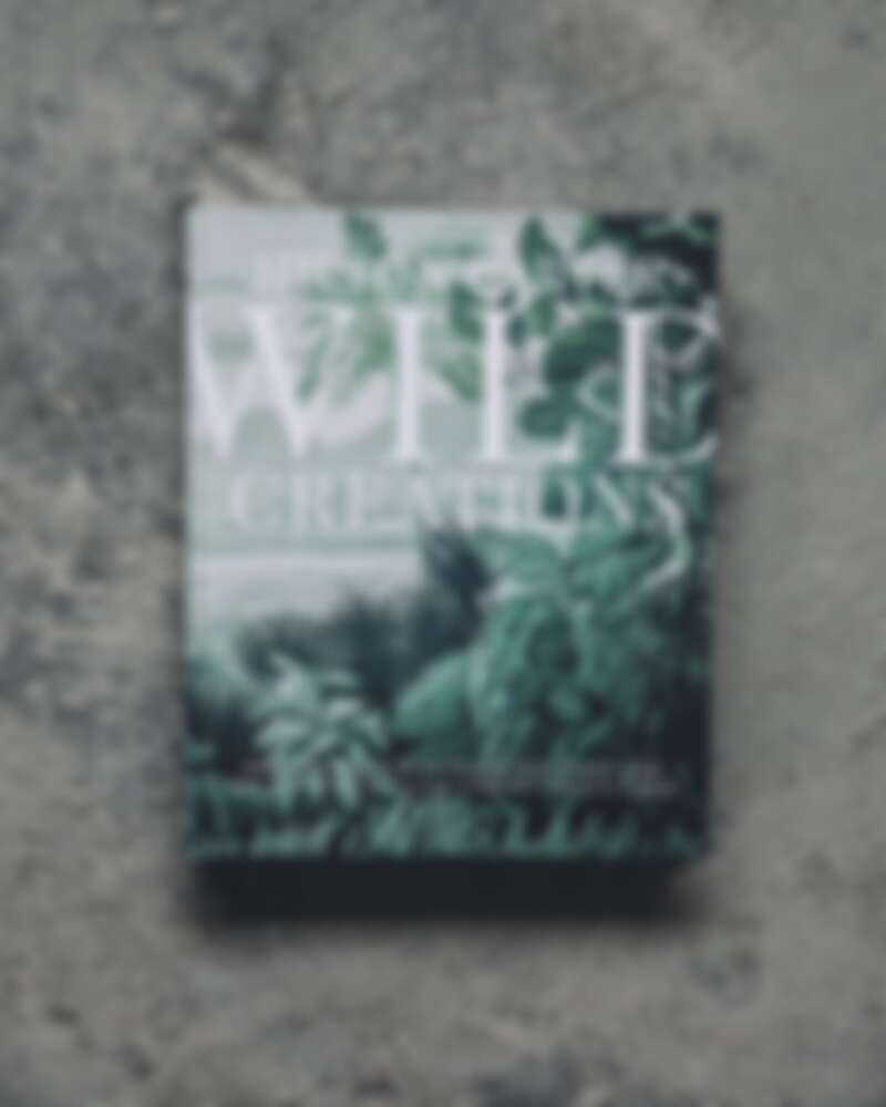 《Wild Creations》今年4月出版。