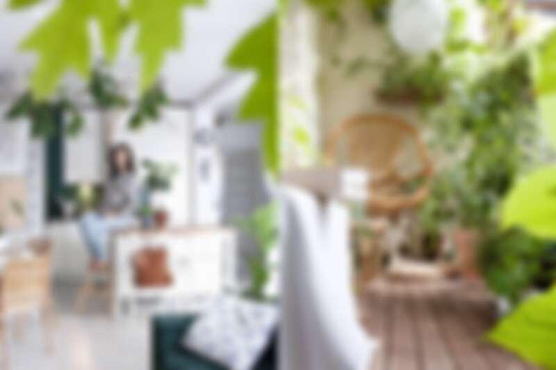 白色室內空間搭配綠色植物,看起來非常清新。