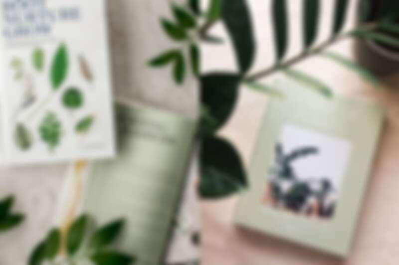 (左)《Root Nurture Grow 》、(右)《House of Plants》。