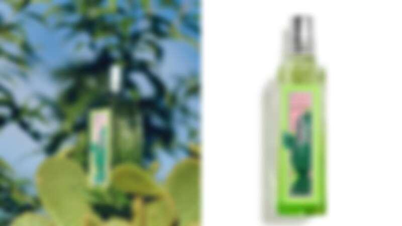 L'OCCITANE歐舒丹2021仙人掌馬鞭草限量系列淡香水