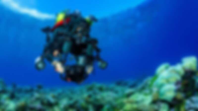 來自巴西的路易茲•羅查 (Luiz Rocha),致力於探索與保護印度洋的中光層珊瑚礁及其生物多樣性,令生態系統得到關注及妥善保護 (1) ©Tane Sinclair-Taylor