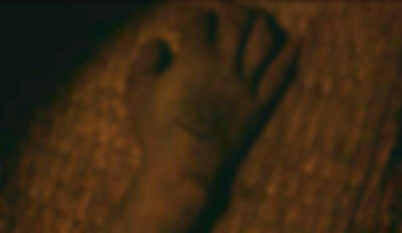 《屍戰朝鮮:雅信傳》婆豬衛手上紋身