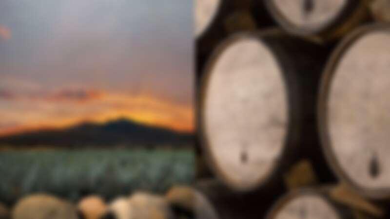 Clase Azul墨西哥頂級龍舌蘭酒