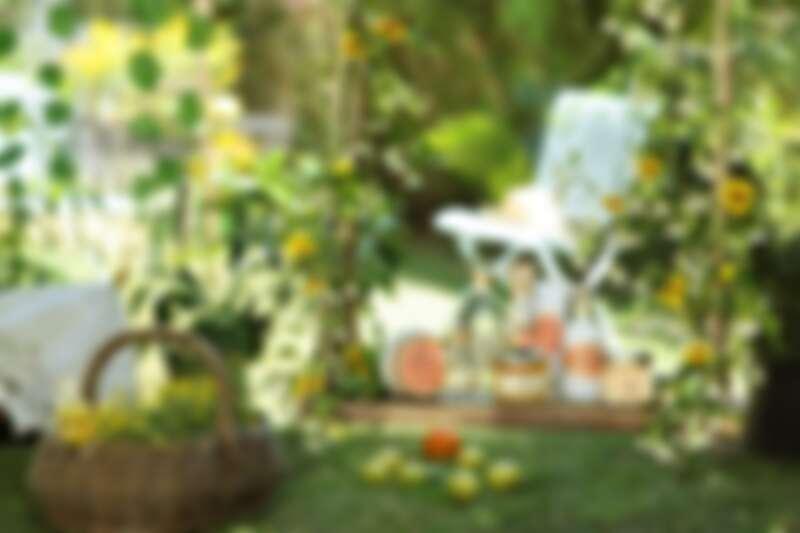 SABON 2021年橙花漫舞系列情境圖