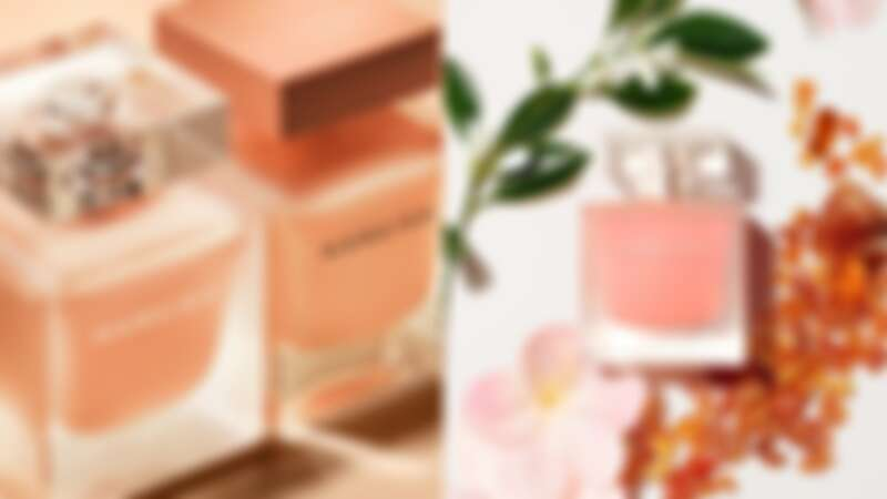 narciso rodriguez NARCISO沐橙琥珀情境圖與香氛材料。