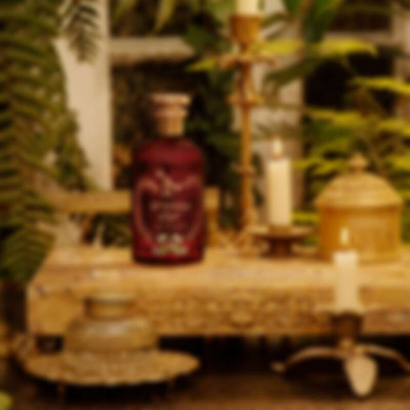 GUCC古馳煉金士花園緋之夕香水瓶採用透明寶石紅玻璃瓶身,彷彿夕陽將盡的耀眼紅光。裡面盛裝不分性別的氣味標誌,既剛強又柔和、亮眼又安神,如同日落之美。