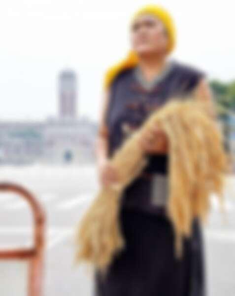 巴奈 Panai 在阿美族語是稻穗的意思