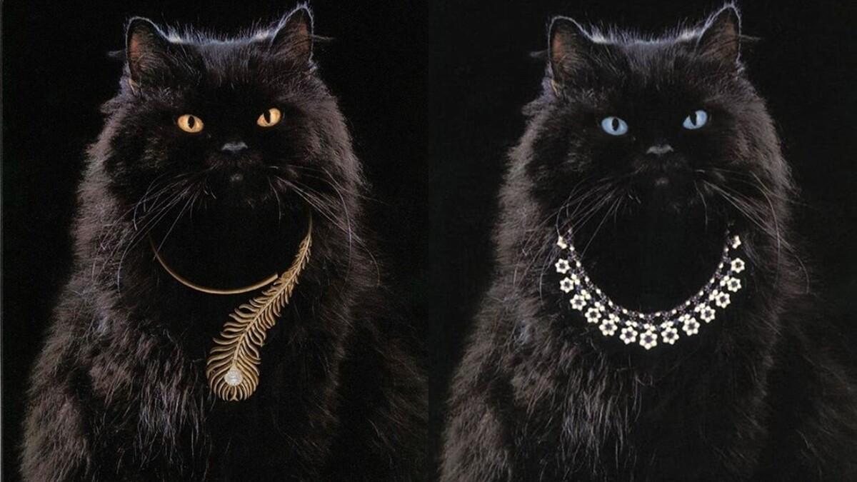 珠寶小學堂|Boucheron品牌史上最萌形象面孔,不只擔綱廣告要角,還有以牠為名的珠寶!