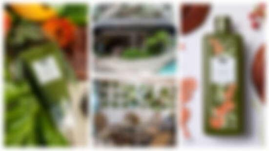 打卡新地標!品木宣言首度跨界聯名September Café 「品木宣言探索咖啡廳」快閃登場 超人氣「靈芝水」也推出藝術家限量包裝!