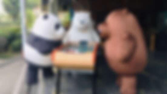 最有愛的熊類!熊熊遇見你正在台灣旅行中,旅遊之際不忘愛護動物、做公益!