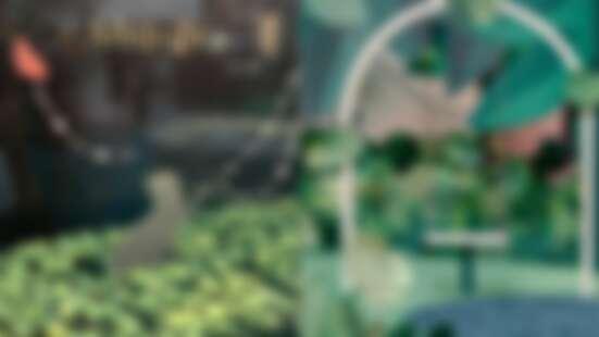梵克雅寶「Alhambra幸運花園」登場!許願池、花園鞦韆…好玩又好拍,本月必須逛起來!