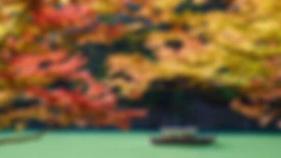 全日本最夢幻的旅館!搭小船才能進入的虹夕諾雅京都,讓你住進極致日式美學