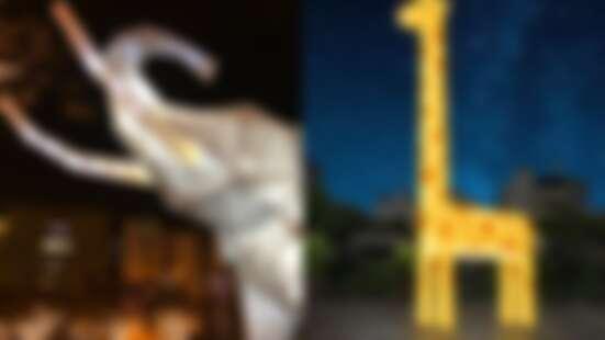 「2020屏東綵燈節」點燈啦!4大主題燈區打造夜間療癒動物園,十公尺高長頸鹿、七彩大猩猩帶頭開趴