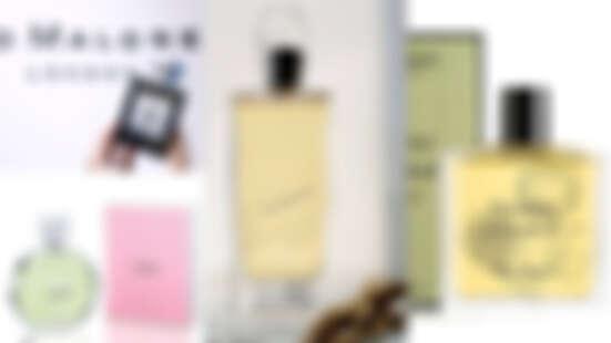 雪松、岩蘭、沉香、廣藿香好聞又招財 10款開運不能錯過的木質調香水