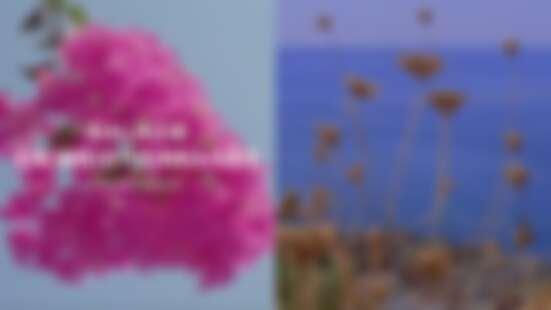 一望無際的海洋景致!Chanel 2021 Cruise 度假系列《Balade en Méditerranée》,將於6/8晚上6點登場