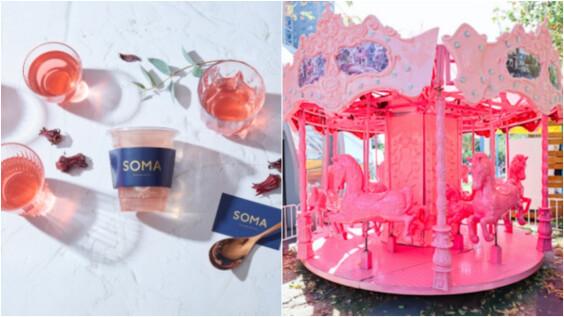 夢幻超粉旋轉木馬、排隊網美飲料店,PINK PICNIC超粉野餐日攤位活動超豐富,讓你嗨玩一整天!