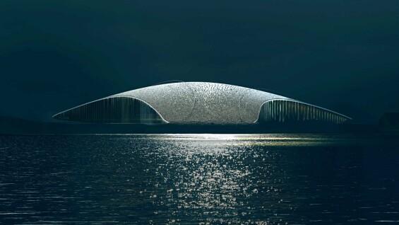 凝結鯨魚拍打海面的震撼瞬間!挪威在北極圈內打造最美賞鯨景點「The Whale」