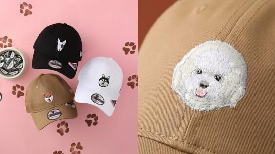 是蔡依林、朴旭俊的比熊犬!New Era打造柴犬、法鬥、哈士奇…汪大頭系列帽款,限定台灣開賣