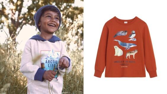 H&M攜手台灣插畫家Whooli Chen推出萌趣動物童裝系列,海豹、鯨魚、北極熊實在太療癒