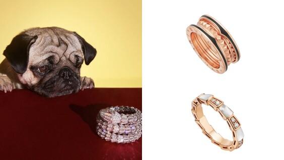 Bulgari寶格麗2020熱賣Top 6珠寶手錶!B.zero1戒指、Serpenti蛇型手環都入榜、手錶銷售黑馬是它...