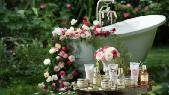 SABON原來有這些玫瑰,三大系列這樣挑就對了!其中白玫瑰還是2021情人節限量香味
