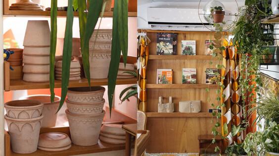 選一盆綠植吧!讓你獲得滿滿綠能量的預約制植栽選物店—hütte 棚屋