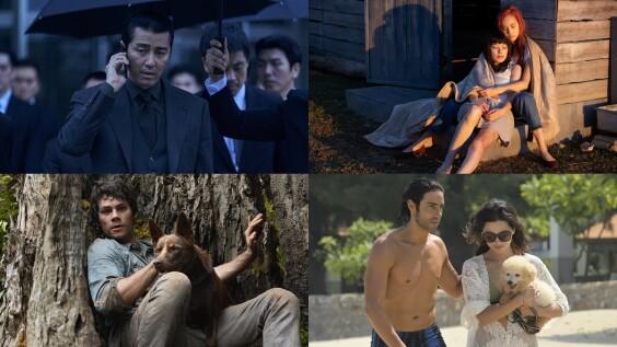 Netflix推薦4月片單!水原希子《彼女》挑戰女同志,「移動迷宮」男主角末日冒險新片《愛與怪物》上架