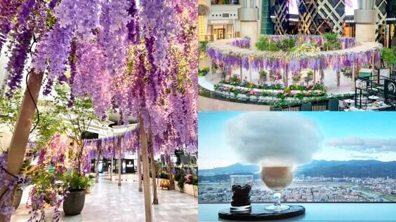 10公尺寬「紫色秘境花園」降臨台北101!紫藤花、童話南瓜馬車超夢幻,還能看著百萬美景享用下午茶