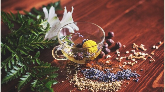 香草也能增強記憶!迷迭香、鼠尾草、香蜂草…幫助穩定情緒、舒緩焦慮