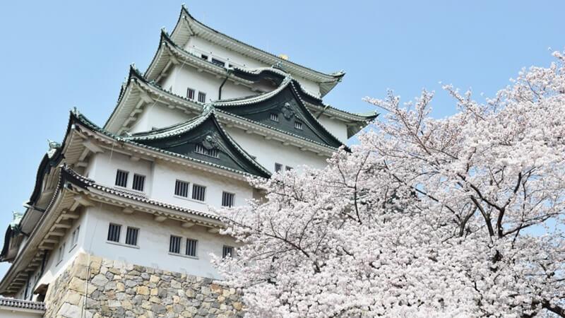 暑假必玩!日本中部城市吸引人的6大亮點