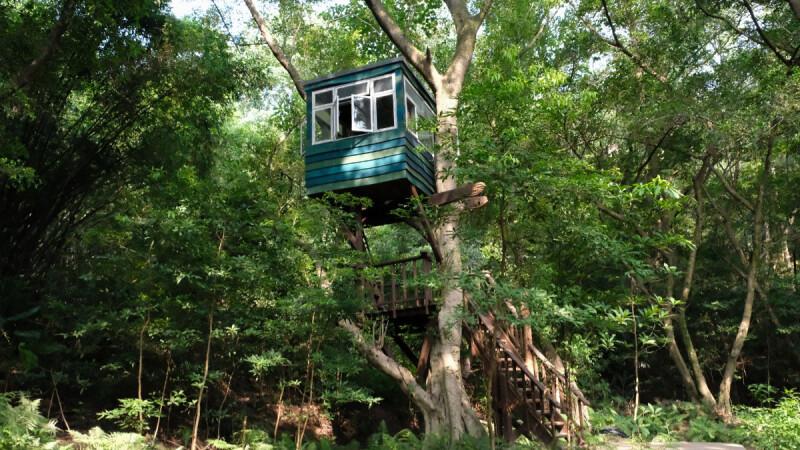 到勤美學來一場森林的小旅行吧!