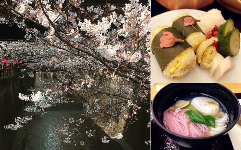 工作壓力都滿滿的日本櫻花美景與櫻花美食給療癒了♥姐妹們真的趕快安排一下出遊去吧!
