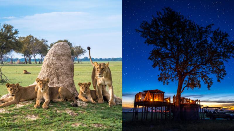 想要浪漫的蜜月之旅?計劃一場難以忘懷的非洲壯遊吧!